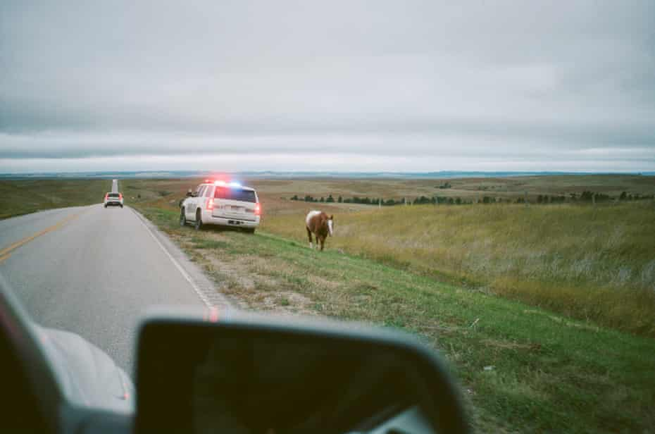 Police Making Sure A Horse Stays Off The HWY