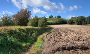 The new agriculture bill currently passing through parliament would require farmers to safeguard the natural environment.