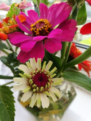 Flowers Friendship And Food Bank Donations Readers