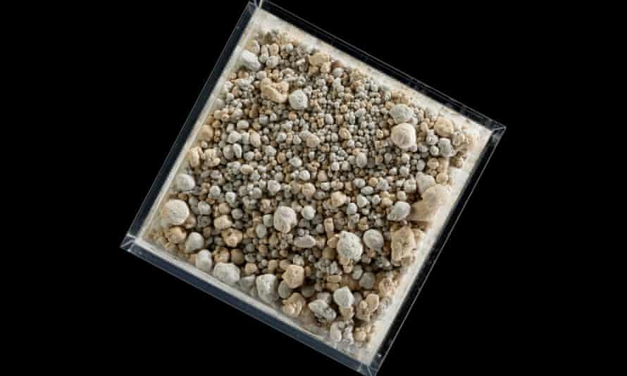 Carbon8 - مجموع ، بخشی از نمایشگاه سیاره آینده ما در موزه علوم