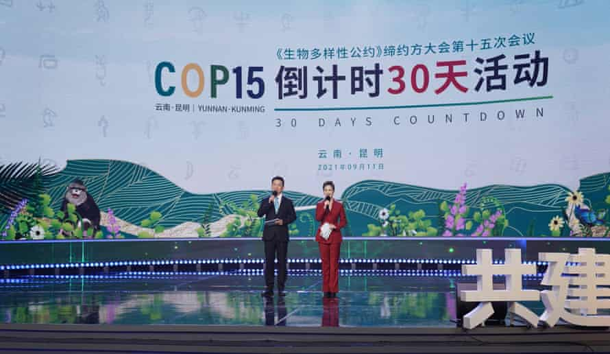 The Chinese city of Kunming will host the Cop15 summit