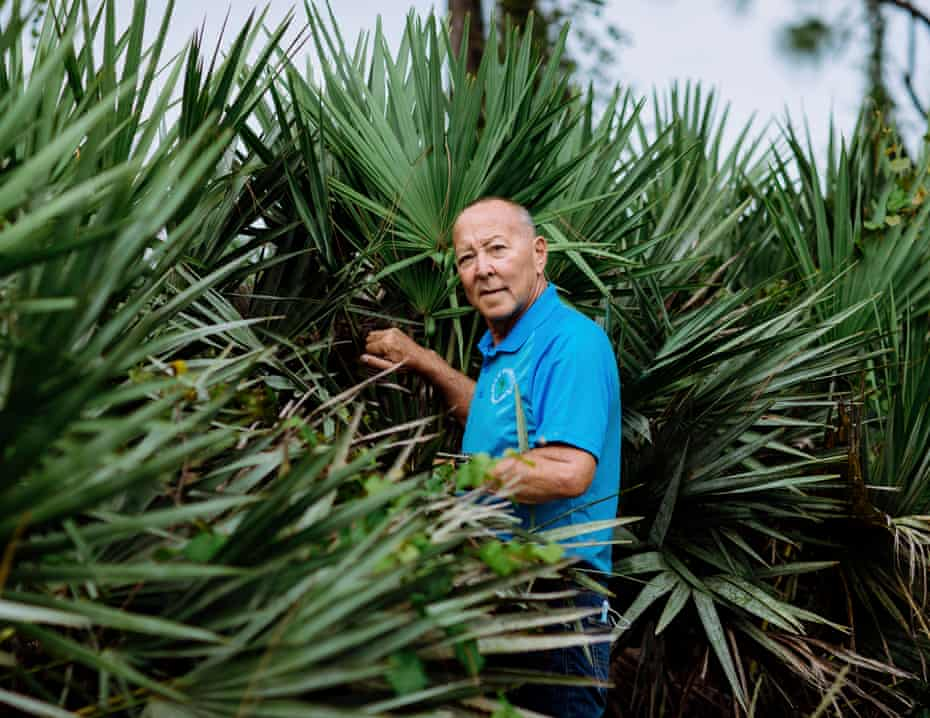 Mike Baker, a longtime harvester and collector of palmetto berries, built his own collection facility in Indiantown, Florida.
