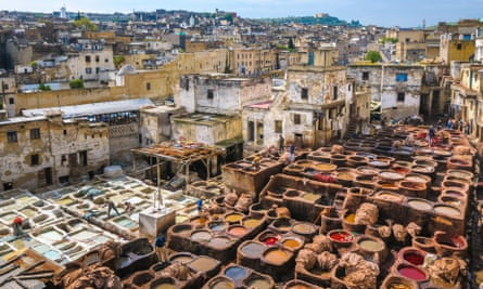 Skin deep: the vast tanneries of Fez, built in the 16th century.