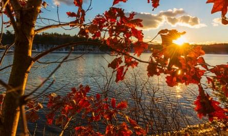 Walden pond, in Concord Massachusetts.