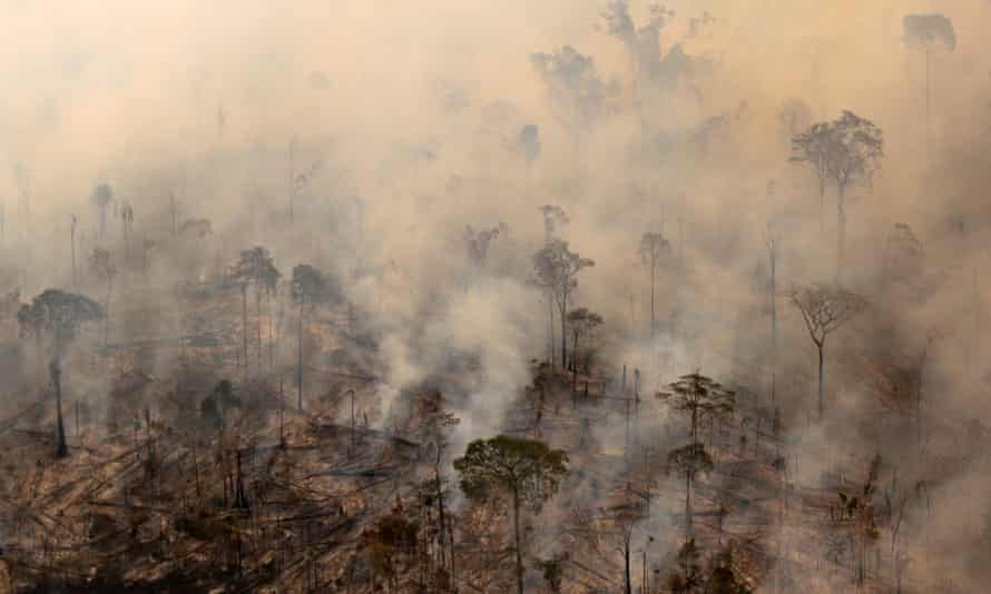 Environmentalists warn deforestation likely to become more acute when Jair Bolsonaro becomes president on 1 January.