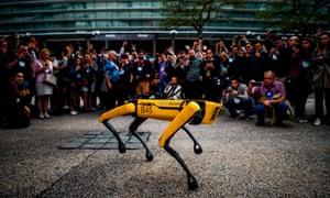 Boston Dynamics' robot dog, Spot.