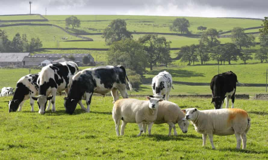 It is legal to use treated sewage sludge on farmland in the UK.
