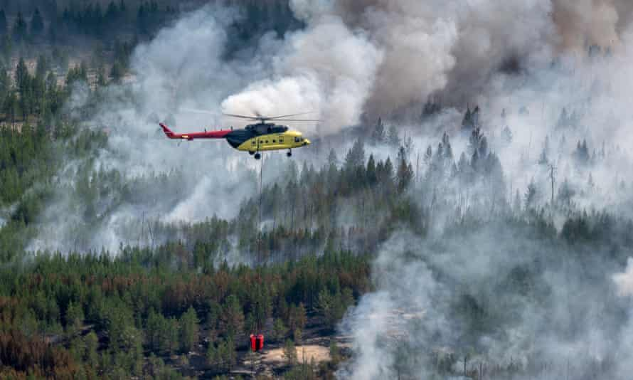 Wildfires in Siberian forest