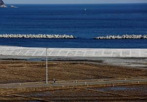 A woman walks near a sea wall in Ofunato