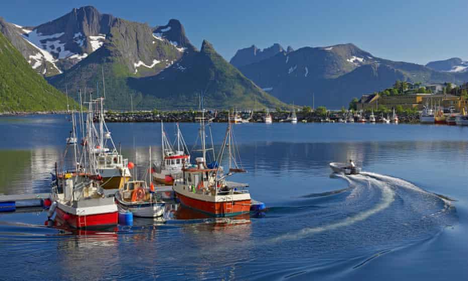 Sailing away: fishing boats at Hamn i Senja marina.