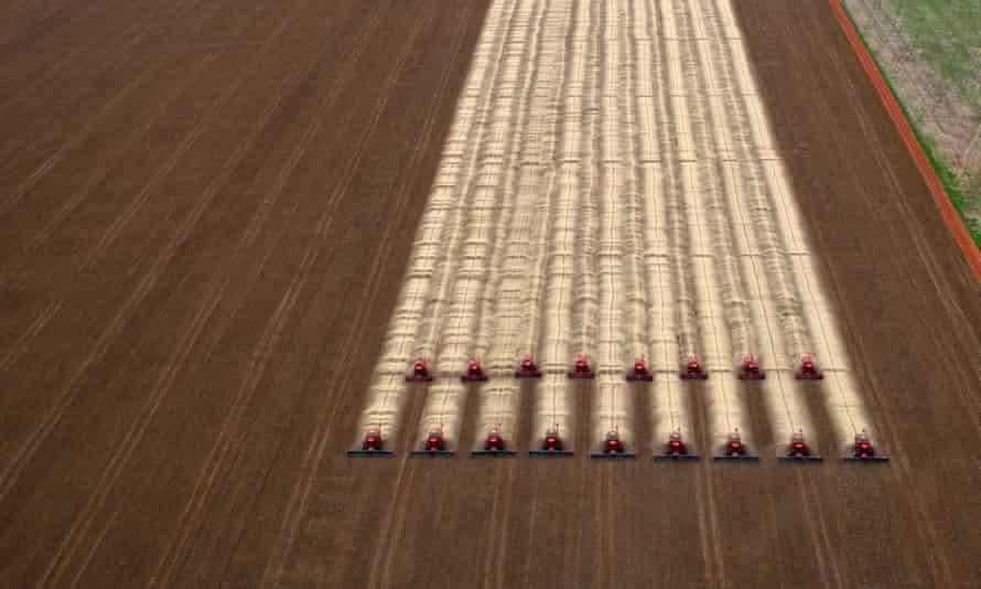 Combine harvesters crop soybeans