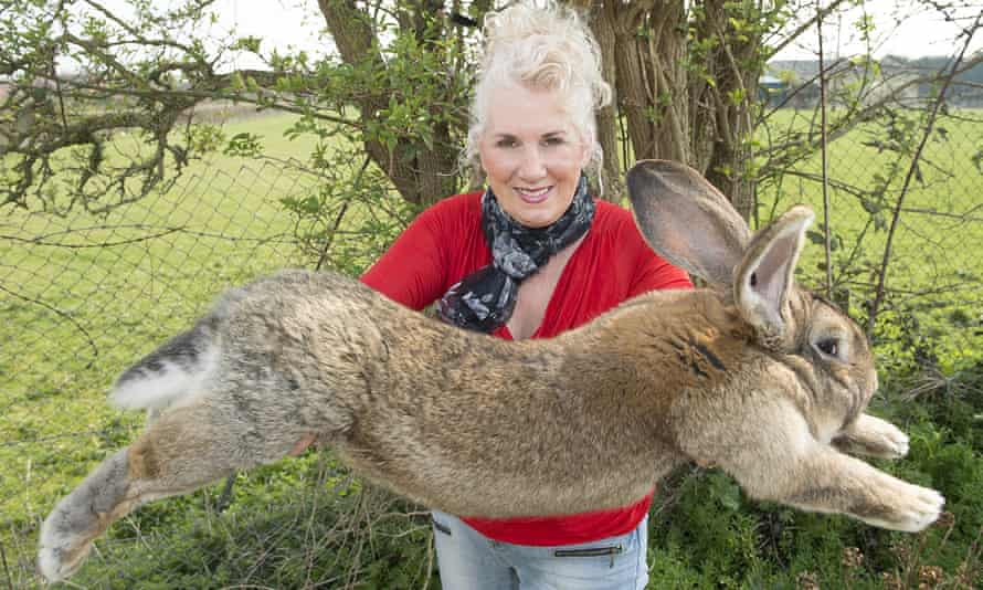 Annette Edwards from Worcestershire with her champion giant rabbit Darius.