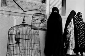 Veiled Muslim women and caged cockatoos, Shiraz, Iran, 1956
