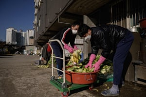 Relatives of Lee Young-ja collect cabbages behind her apartment to make kimchi at her home in the eastern port city of Donghae