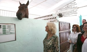 The Duchess of Cornwall visits a riding stables