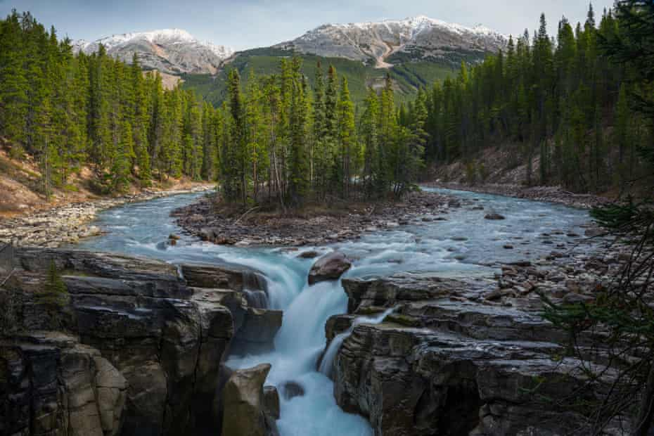 Sunwapta Falls, Symmetrical view of landscape with waterfall, forest and mountains