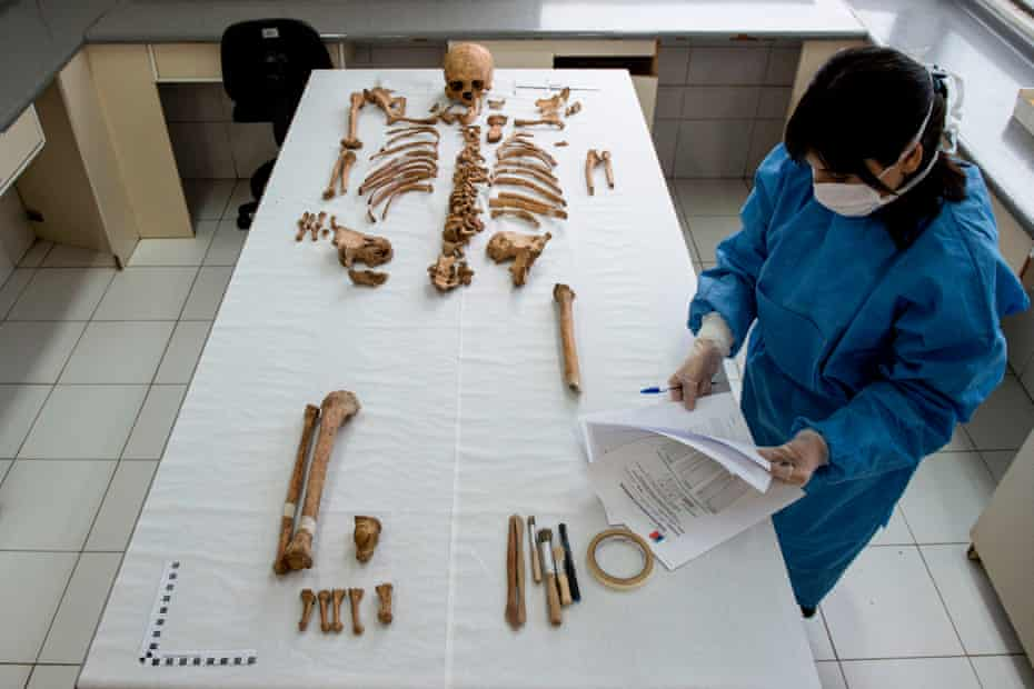 Giselle Contreras refers to notes as she works on the remains of a human skeleton