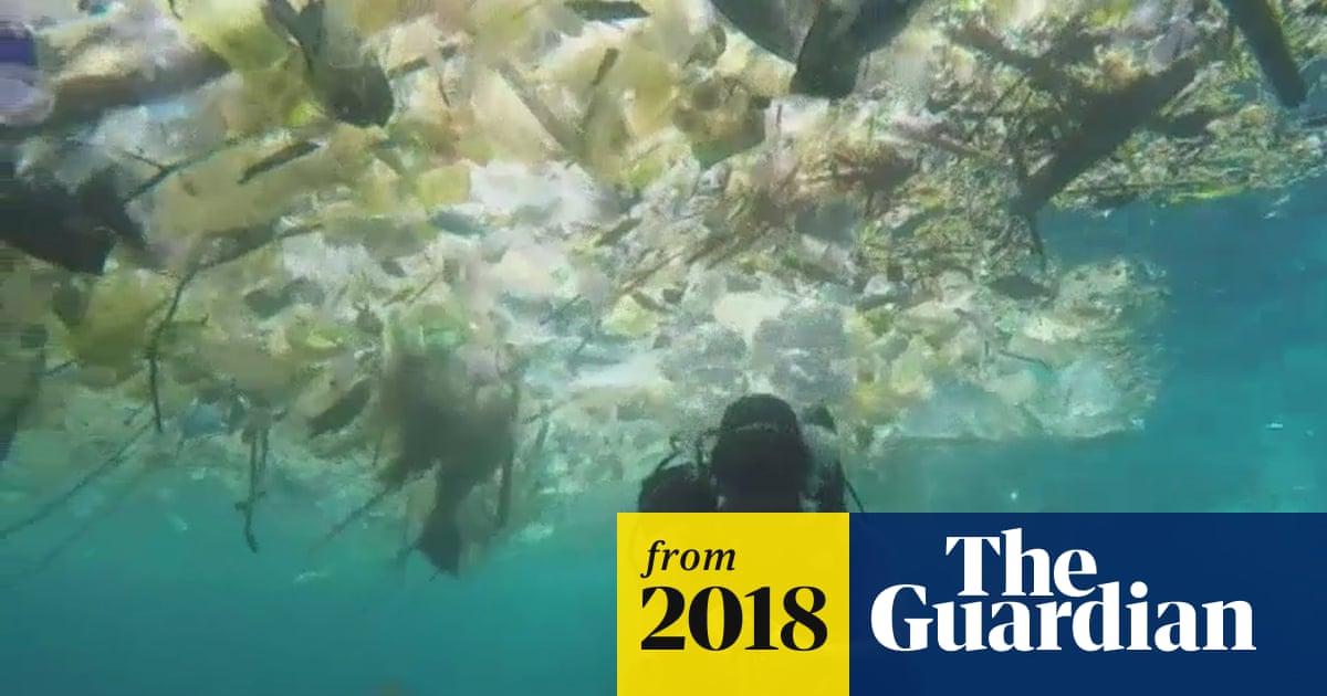 Plastic Plastic Plastic British Diver Films Sea Of Rubbish Off