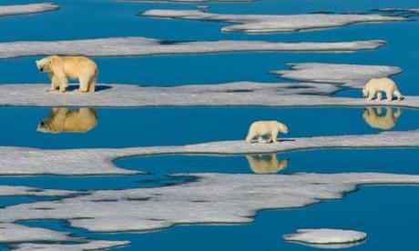Soaring ocean temperature is 'greatest hidden challenge of our generation'