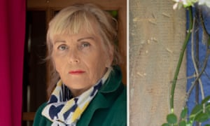 Kate Atkinson: her new novel is a fine example of her 'mature work'