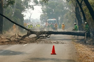 Trees are cleared on Tonimbuk Road as fire crews battle blazes in south-east Victoria.