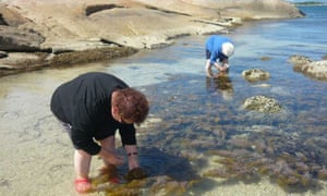 Lola Greeno (l) collecting shells at Lady Barron on Flinders Island, with her mother-in-law Dulcie Greeno.