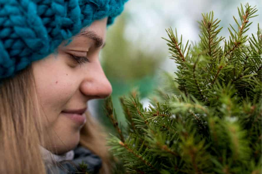 A woman with a Christmas tree