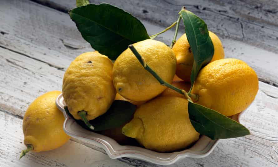 'Lemons are the food of happiness': Amalfi lemons.