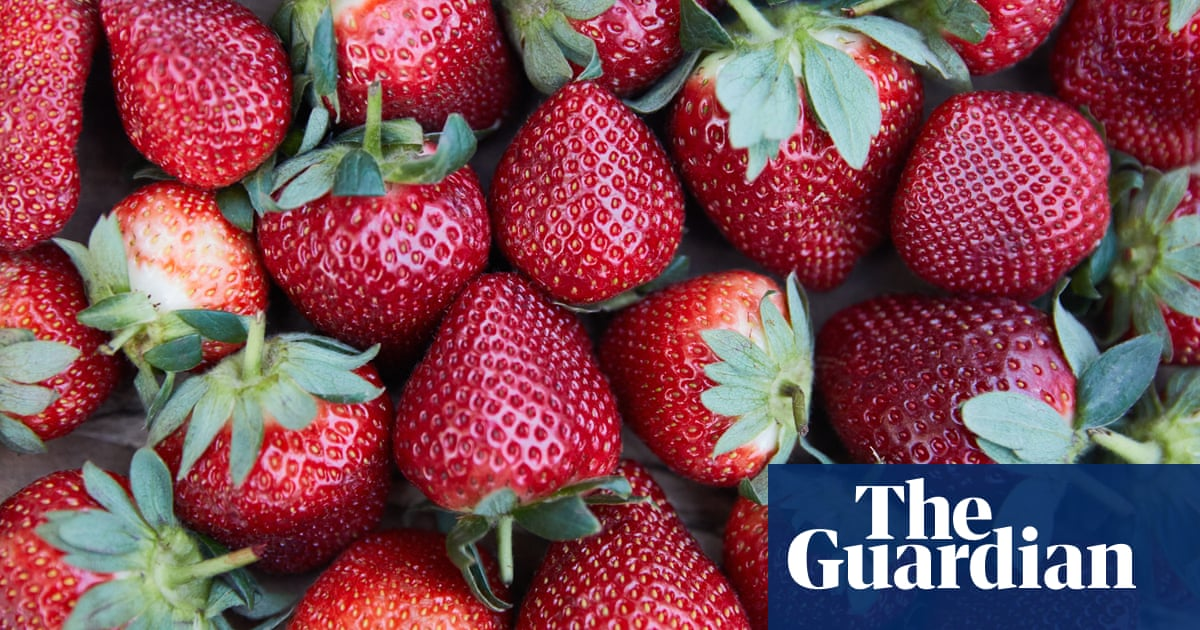 Strawberry crisis: eight easy ways to use up your excess fruit | Food | The Guardian