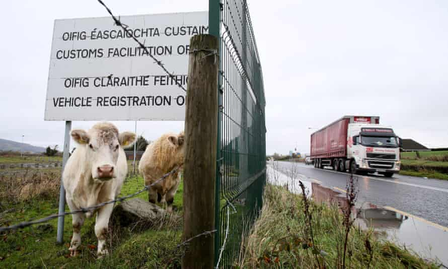 Cows stand under a sign at a disused Irish border vehicle registration and customs facilitation office outside Dundalk.