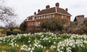 Snowdrops at Benington Lordship Gardens, Hertfordshire (Galanthus), UK.