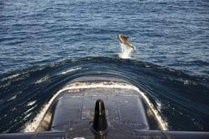 Mediterranean Sea A dolphin leaps near the bow of Israeli navy submarine Leviathan off the coast of Haifa in northern Israel