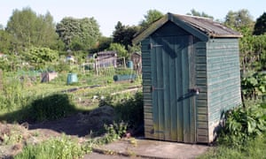 Garden shed on an allotment plot.