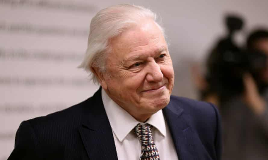 Sir David Attenborough is to present the BBC's Planet Earth 2.