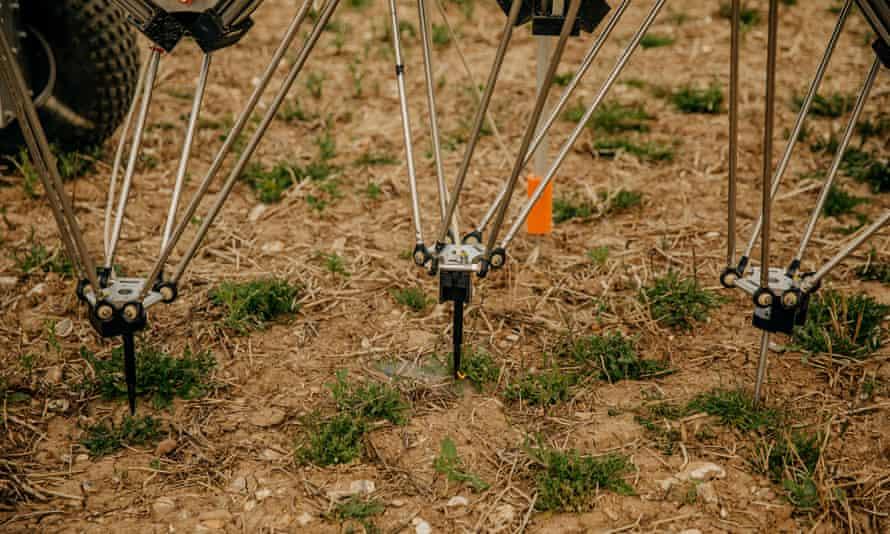 Tampilan jarak dekat dari tiang robot penyiangan