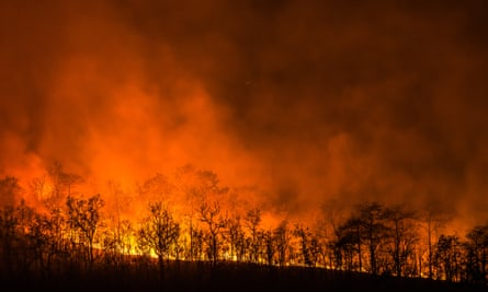 Up in flames: 'There is no planet B! Don't burn our future!'
