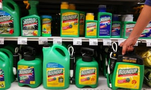Glyphosate is the core ingredient in Monsanto's $4.75bn a year RoundUp weedkiller brand.