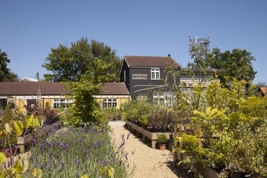 Darsham Nurseries: not your average garden centre.