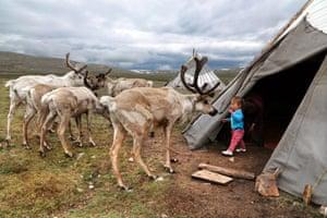 Tuvshinbayar playing with the reindeer