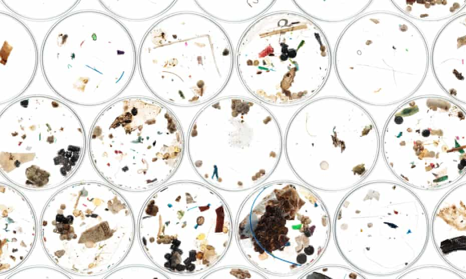 Microplastics are found in our diets, our water and are impacting our environment. Should we be worried?