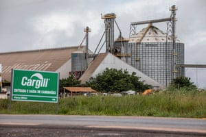 A soya bean processing and distribution centre owned by trading giant Cargill. The company imported 1.5m tonnes of Brazilian soya to the UK in the six years to August 2020.