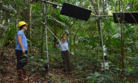 Tana Wood (right) and Aura Alonso-Rodriguez (left) cleaning heaters during their project to understand the impact of climate change on the Luquillo experimental forest.
