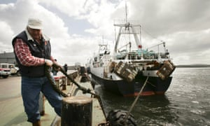 For much of the Falklands' history, its economy was based on sheep exports – but now fishing is No 1.