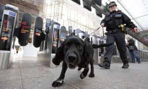 An officer from the British Transport Police patrols with a sniffer dog as part of Counter Terrorism Awareness Week.