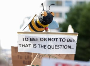 A protester in Brussels shows their concern for the bees.