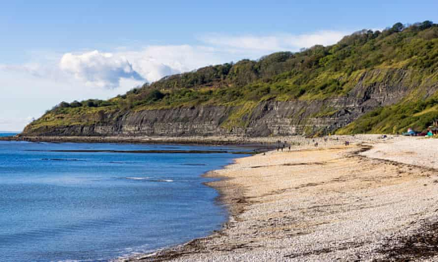 Fossil fuelled … the Undercliff and beach west of Lyme Regis