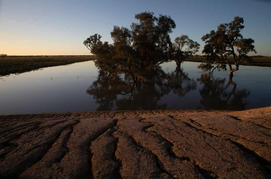Erosion leading into a Billabong on the Darling Floodplain along the Wilcannia-Tilpa road.