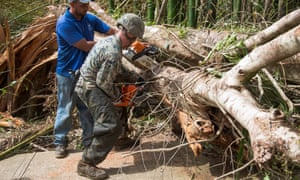 A US Marine and a local resident work to clear a tree from the main road in Ceiba, Puerto Rico.