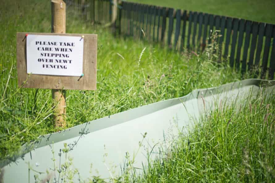 A newt fence and sign erected at a lagoon creation area at Rutland Water in 2010 to ensure that great crested newts were not killed during construction work.