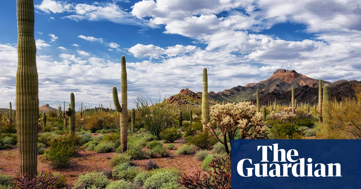 Arizona's Organ Pipe park is a 'paradise' for tourists but a